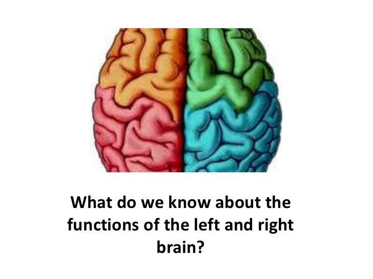 Feminine brain the The Female