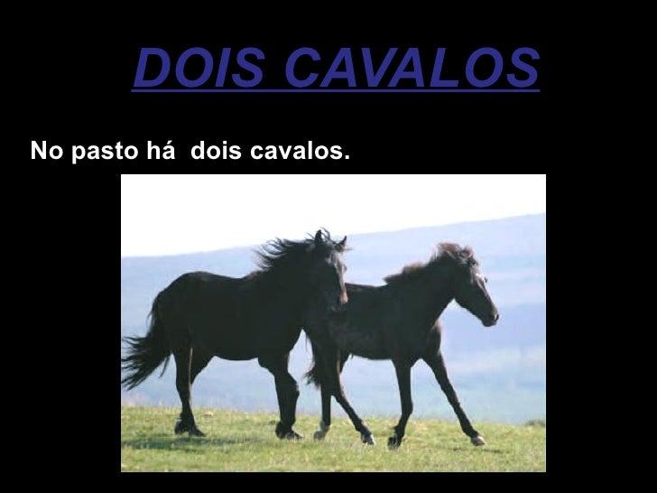 DOIS CAVALOS No pasto há  dois cavalos.