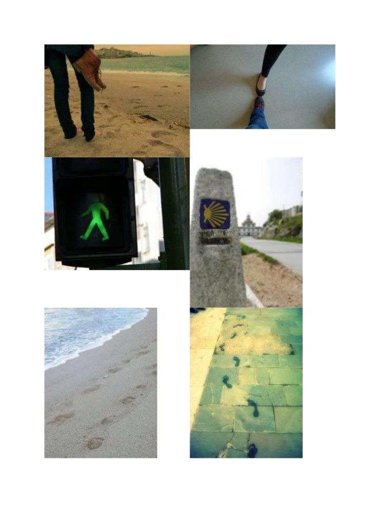 Fotos Camino