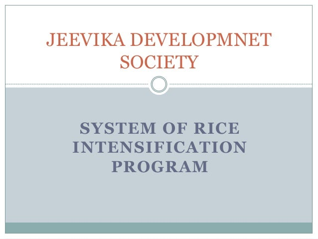 JEEVIKA DEVELOPMNET SOCIETY  SYSTEM OF RICE INTENSIFICATION PROGRAM