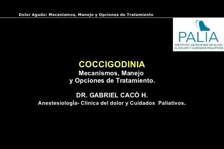 COCCIGODINIA Mecanismos, Manejo  y Opciones de Tratamiento. DR. GABRIEL CACÓ H. AnestesiologÍa- Clinica del dolor y Cuidad...