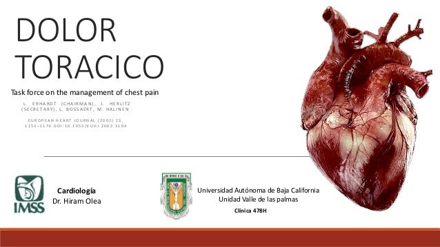 DOLOR  TORACICO  Task force on the management of chest pain  L . E R H A R D T ( C H A I RMA N ) , J . H E R L I T Z  ( S ...