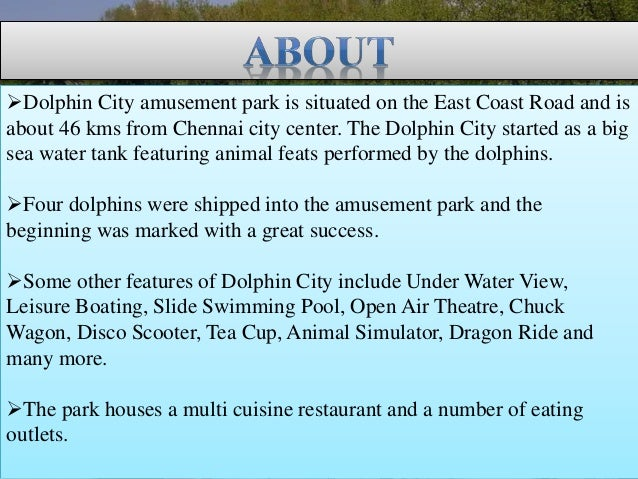 Dolphin City Chennai Find Address Fees