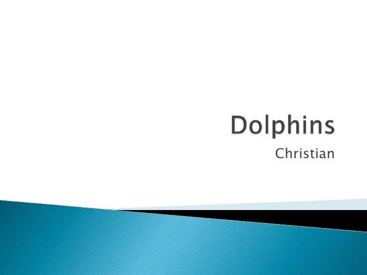 Dolphins<br />Christian<br />