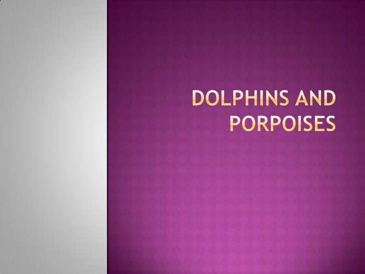 Do you know thedifference betweena porpoise and adolphin?