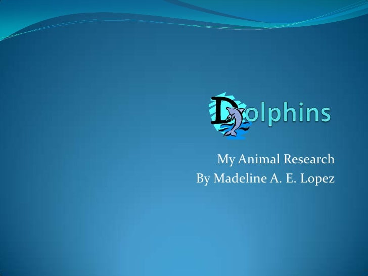 My Animal ResearchBy Madeline A. E. Lopez