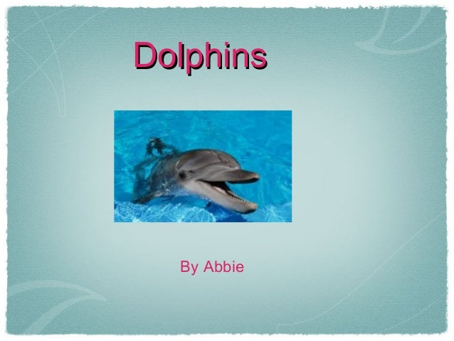 DolphinsDolphinsBy Abbie