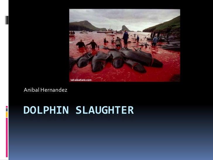Dolphin Slaughter<br />Anibal Hernandez<br />