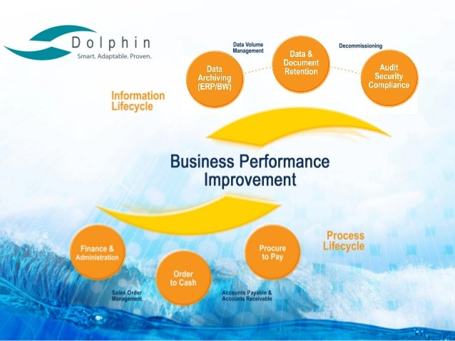 Dolphin SAP Experts