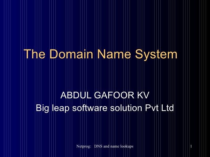 The Domain Name System ABDUL GAFOOR KV Big leap software solution Pvt Ltd