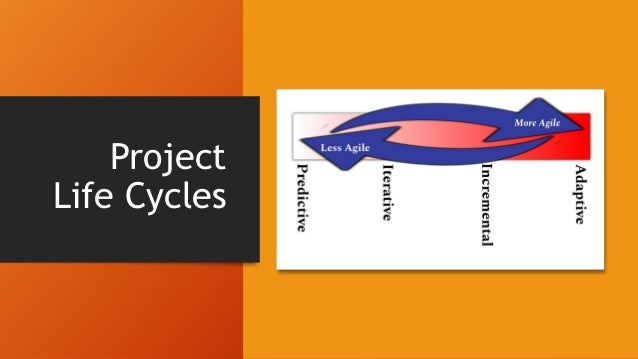 Project Life Cycles