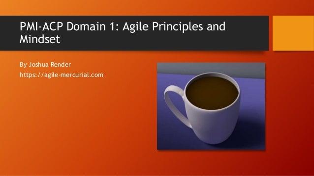 PMI-ACP Domain 1 Agile Principles and Mindset