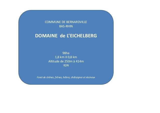 COMMUNE DE BERNARDVILLE BAS-RHIN  DOMAINE de L'EICHELBERG  98ha 1,8 km X 0,8 km Altitude de 250m à 414m IGN  Foret de chên...