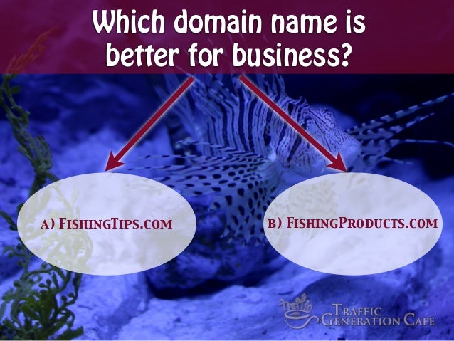 Which domain name is better for business?  a) FishingTips.com  b) FishingProducts.com