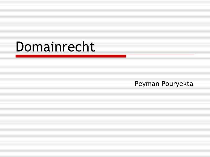 Domainrecht Peyman Pouryekta