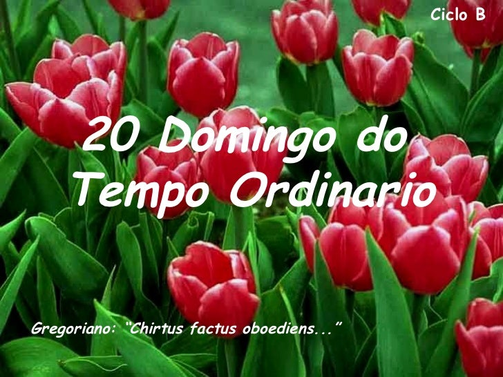 """Ciclo B    20 Domingo do    Tempo OrdinarioGregoriano: """"Chirtus factus oboediens..."""""""