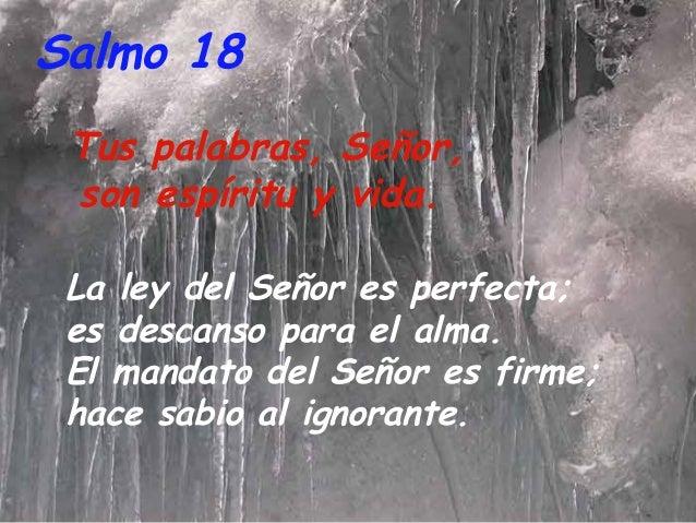 Resultado de imagen para Tus palabras, Señor, son espíritu y vida  La ley del Señor es perfecta