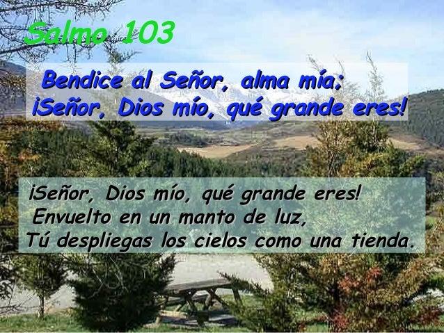 Salmo 103 Bendice al Señor, alma mía;¡Señor, Dios mío, qué grande eres!¡Señor, Dios mío, qué grande eres! Envuelto en un m...