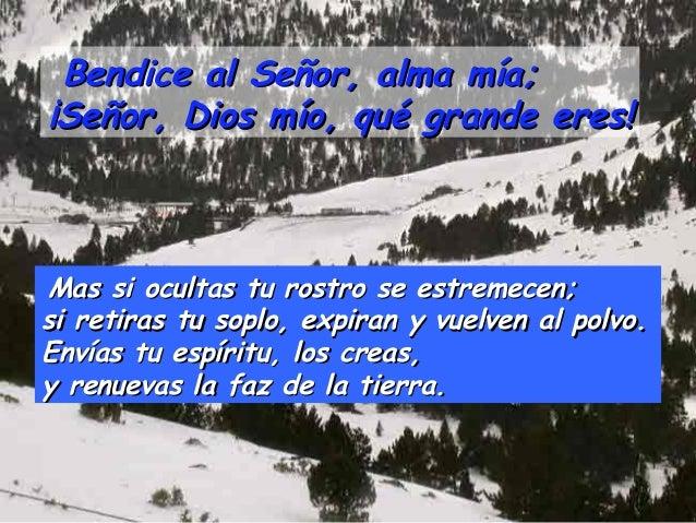 Bendice al Señor, alma mía;¡Señor, Dios mío, qué grande eres!Mas si ocultas tu rostro se estremecen;si retiras tu soplo, e...