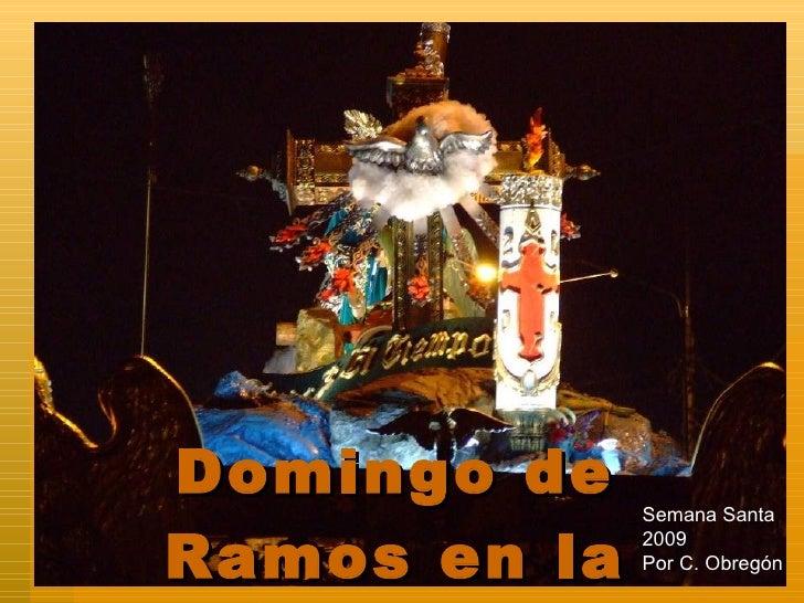 Domingo de Ramos en la Noche Semana Santa 2009 Por C. Obregón