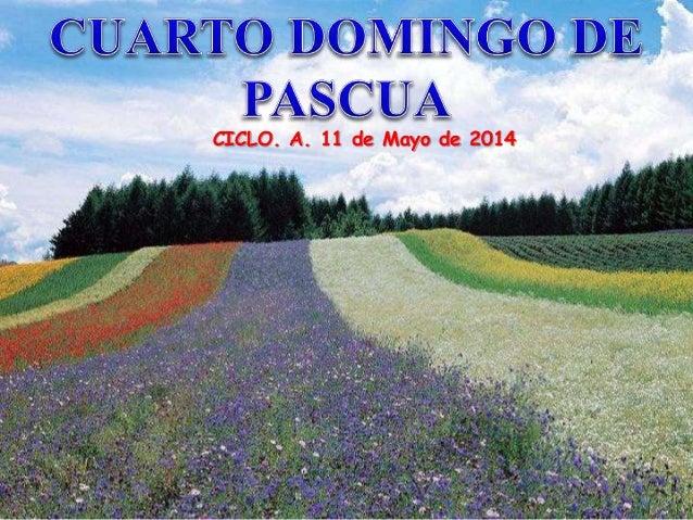 CICLO. A. 11 de Mayo de 2014