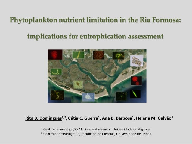 Phytoplankton nutrient limitation in the Ria Formosa:     implications for eutrophication assessment    Rita B. Domingues1...