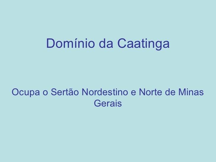 Domínio da CaatingaOcupa o Sertão Nordestino e Norte de Minas                 Gerais