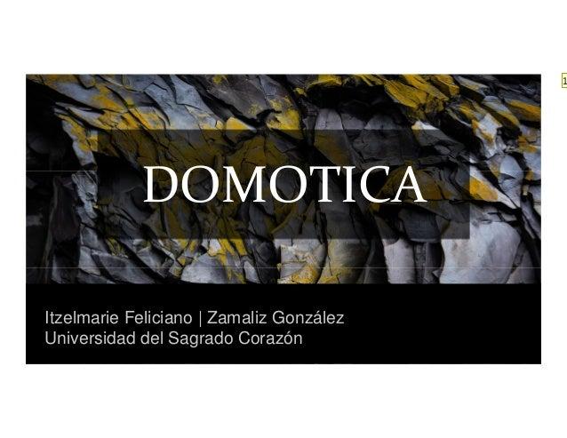 Itzelmarie Feliciano | Zamaliz González Universidad del Sagrado Corazón DOMOTICA 1