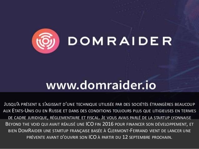 DomRaider, du drop catching à la blockchain, une ico française Slide 3