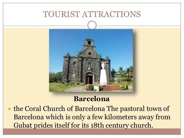 TOURIST ATTRACTIONS Capalonga Shrine of the Black Nazarene  One of the famous tourist spots of the province.  Lead to ev...
