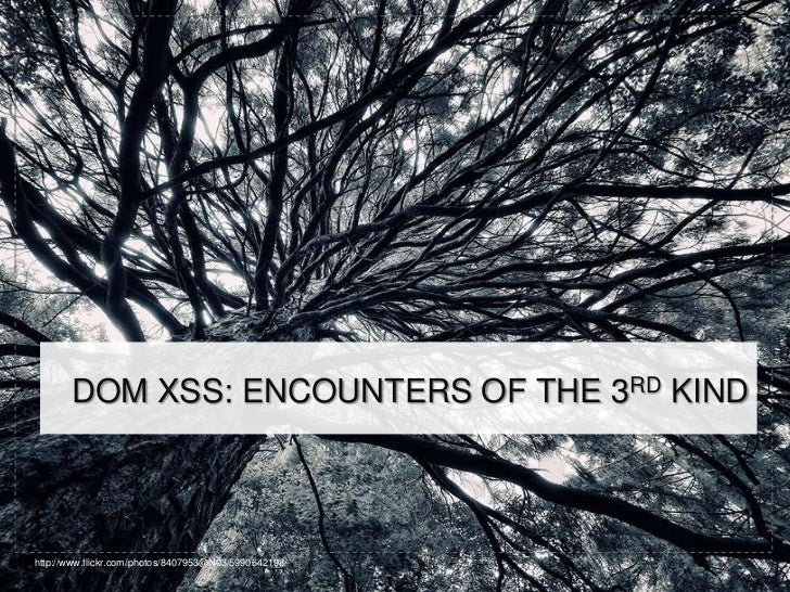 DOM XSS: ENCOUNTERS OF THE 3RD KINDhttp://www.flickr.com/photos/8407953@N03/5990642198/