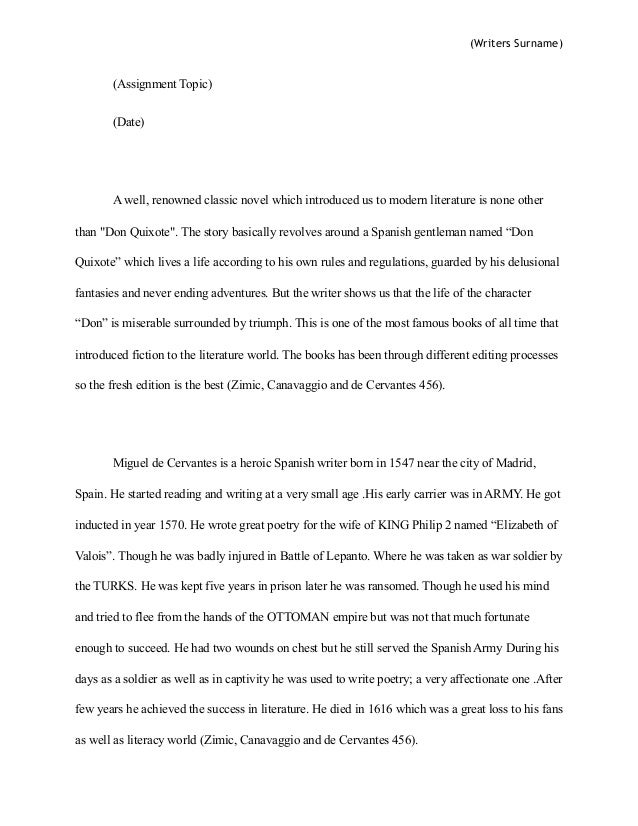 don quixote character analysis essay