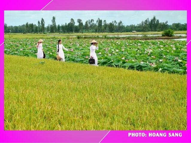 PHOTO: HOANG SANG