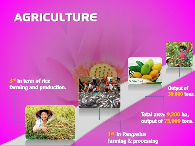 AGRICULTURE 3rd in term of rice farming and production. 1st in Pangasius farming & processing Total area: 9,200 ha, output...