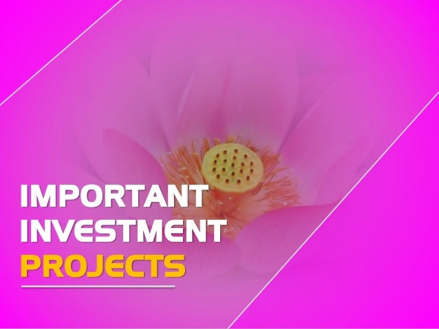 IMPORTANT INVESTMENT PROJECTS