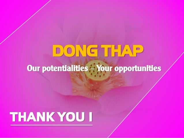 DONG THAP Our potentialities – Your opportunities THANK YOU !