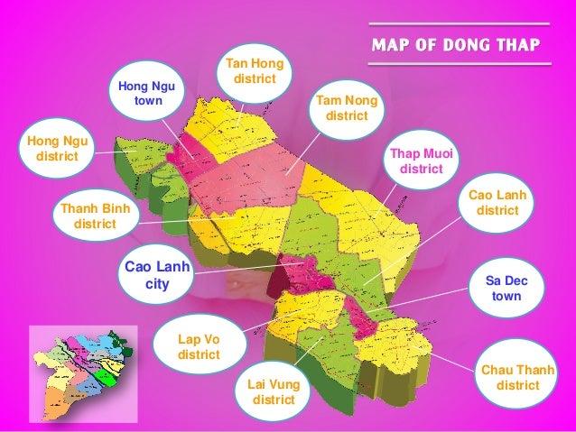 Cao Lanh city Sa Dec town Chau Thanh districtLai Vung district Cao Lanh district Thap Muoi district Lap Vo district Tam No...