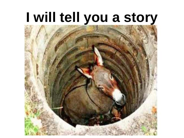 Donkey In The Well Shake It Off And Take A Step Up