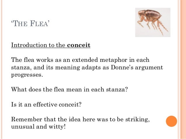 exploring the metaphors in john donnes poem the flea View essay - john donne's the flea ap lit from ap lit ap literat at venice   the use of extended metaphor is used throughout the whole poem in order to.