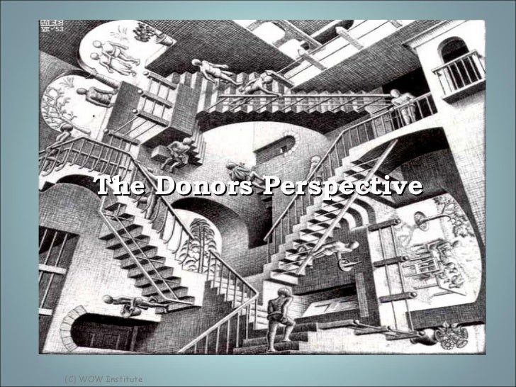 The Donors Perspective (C) WOW Institute
