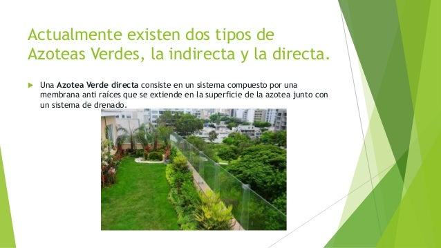 Azoteas verdes for Tipos de muros verdes