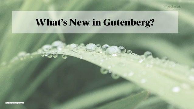 @jeckman What's New in Gutenberg? Photo byKahikaonUnsplash