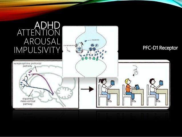 Dopamine hypothesis animation phd thesis on staphylococcus aureus