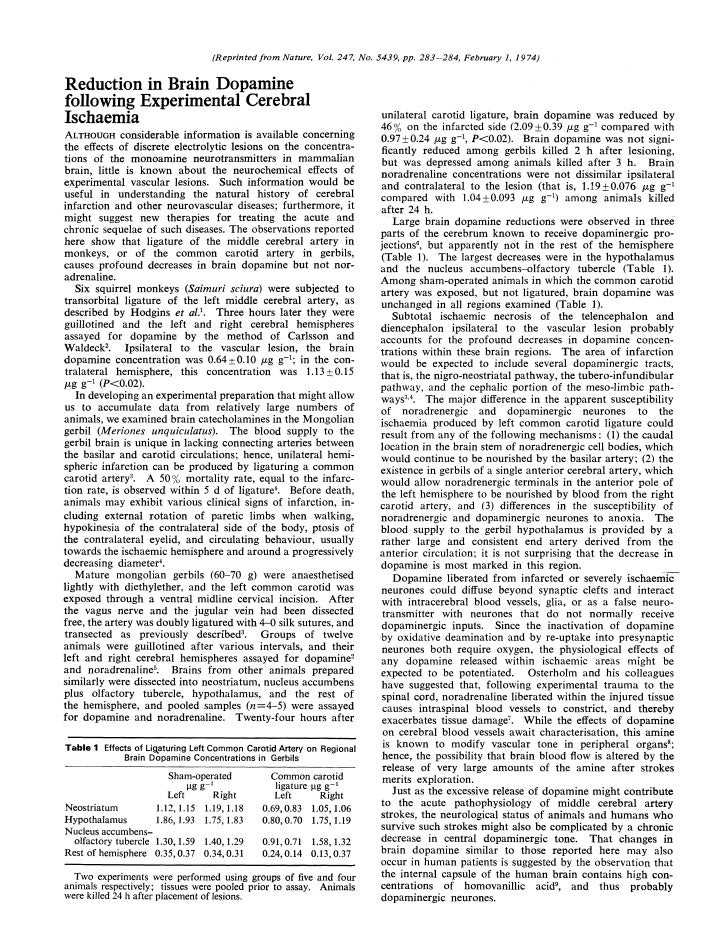 Dopamine and ischemia
