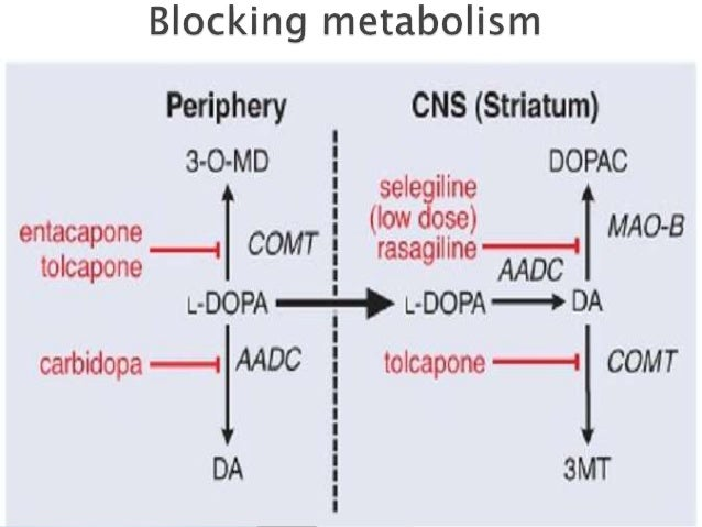 Dopamine, dopaminergic system, parkinson's disease, pharmacotherapy a…