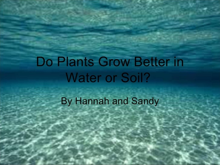 Do Plants Grow Better in    Water or Soil?    By Hannah and Sandy