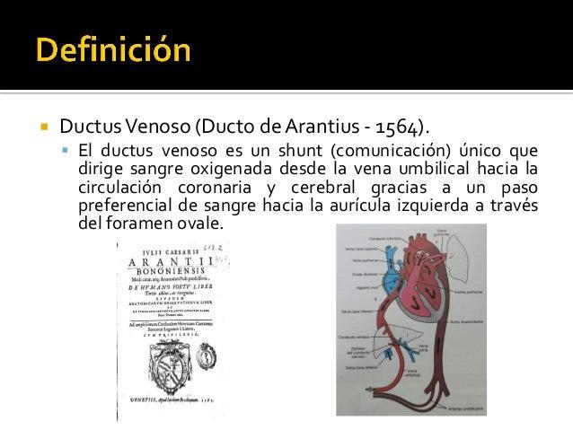 Doppler del ductus venoso fetal