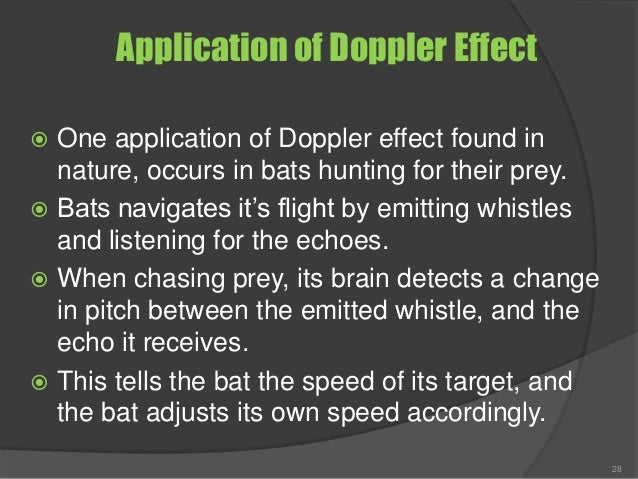 Application of Doppler Effect  One application of Doppler effect found in nature, occurs in bats hunting for their prey. ...