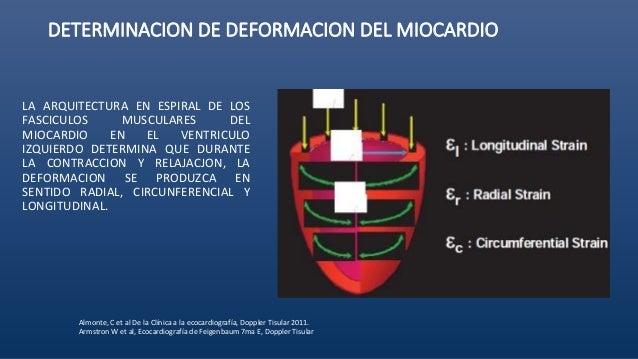 Feigenbaum ecocardiografia