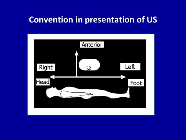 Convention in presentation of US